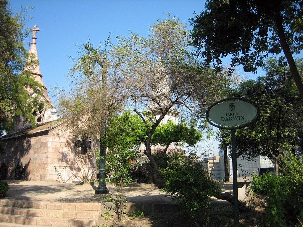 Darwin Jardin
