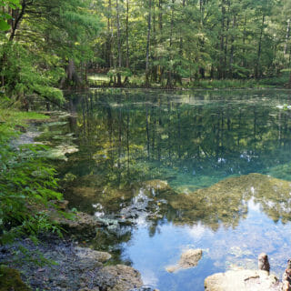 Secret Gems of the Suwannee