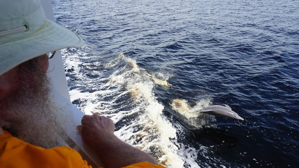 John watching dolphins Punta Gorda
