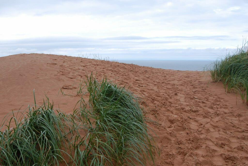 Sabal Dunes at Pictured Rocks National Lakeshore