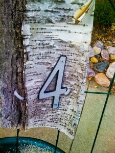 Willowood Inn room number on birch bark