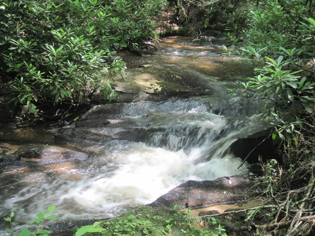 Laurel Fork AT