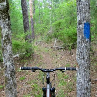 Mountain Biking at Hickory Knob