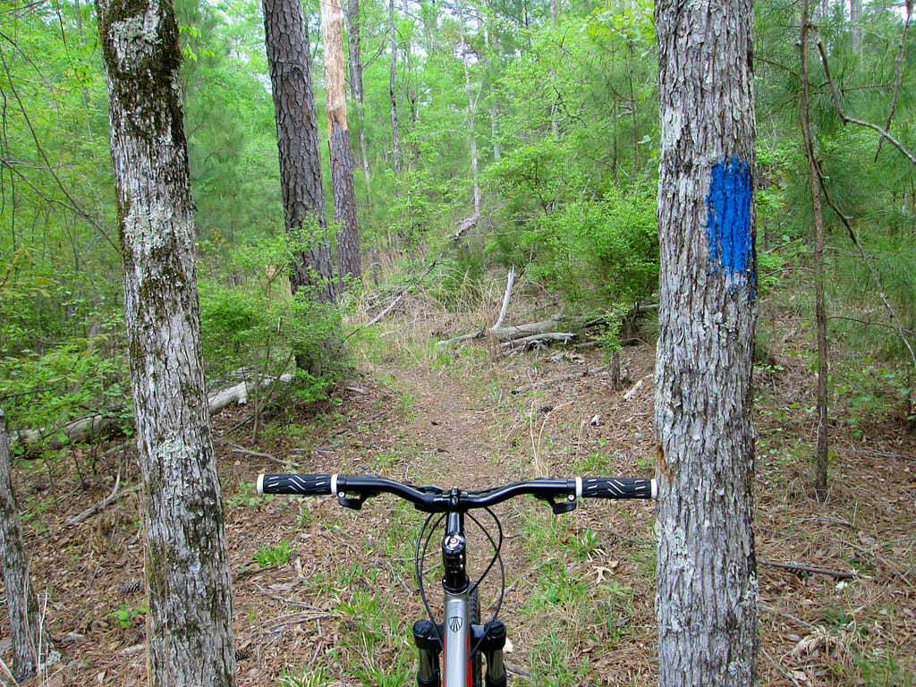 Biking Hickory Knob