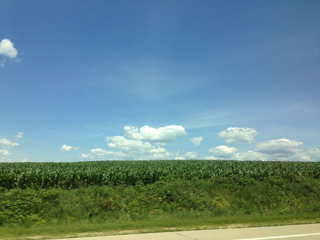 Typical Iowa view