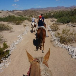 Happy Trails on the Horseshoe Trail