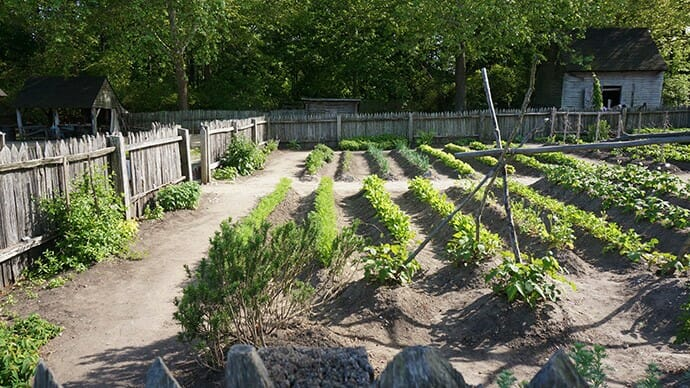 Colonial gardens at the Yorktown Victory Center