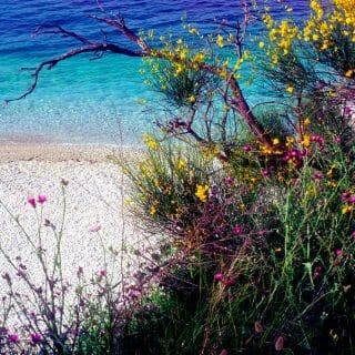 Springtime in Corfu