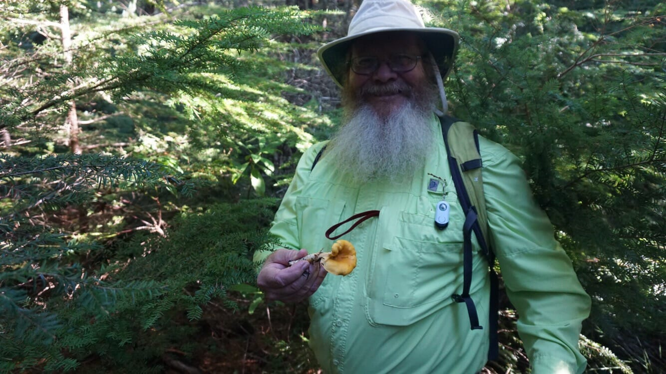 John and the elusive chanterelle