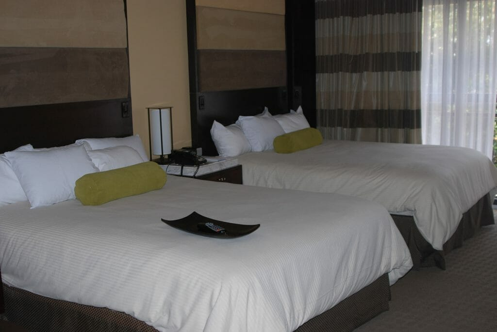 Contemporary Resort hotel room