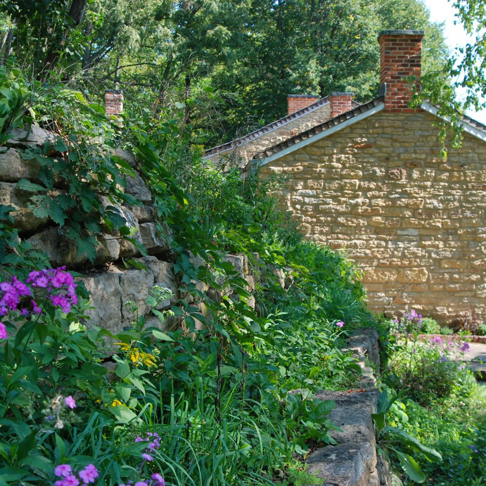 Hillside garden at Pendarvis