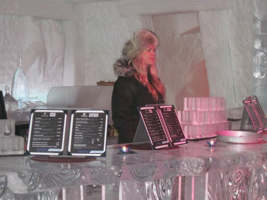 Bartender at the Ice Bar