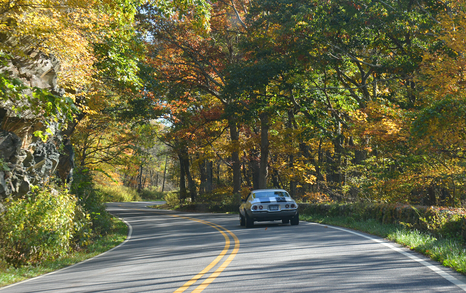 Fall Color on Skyline Drive