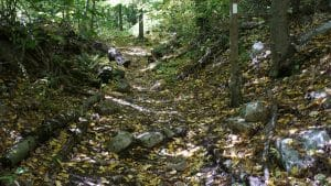 Appalachian Trail on Waywayanda Mountain