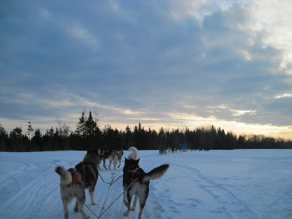 Crossing a snowy expanse by dogsled