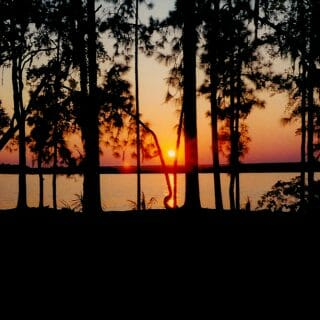 Backpacking Cumberland Island