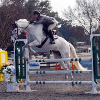 Jumper at HITS