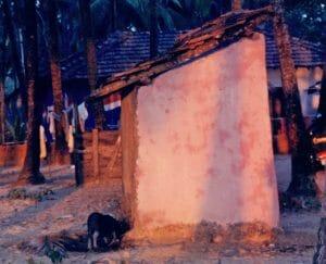 Palolem pig toilet