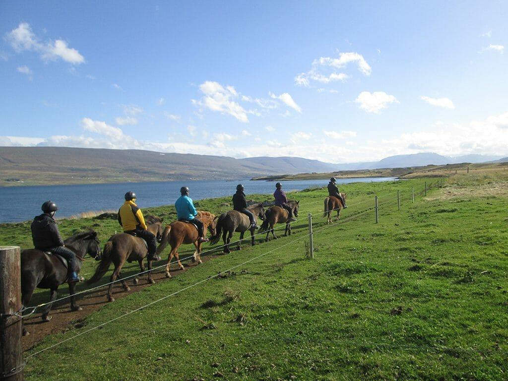 Riding along Eyjafjörður