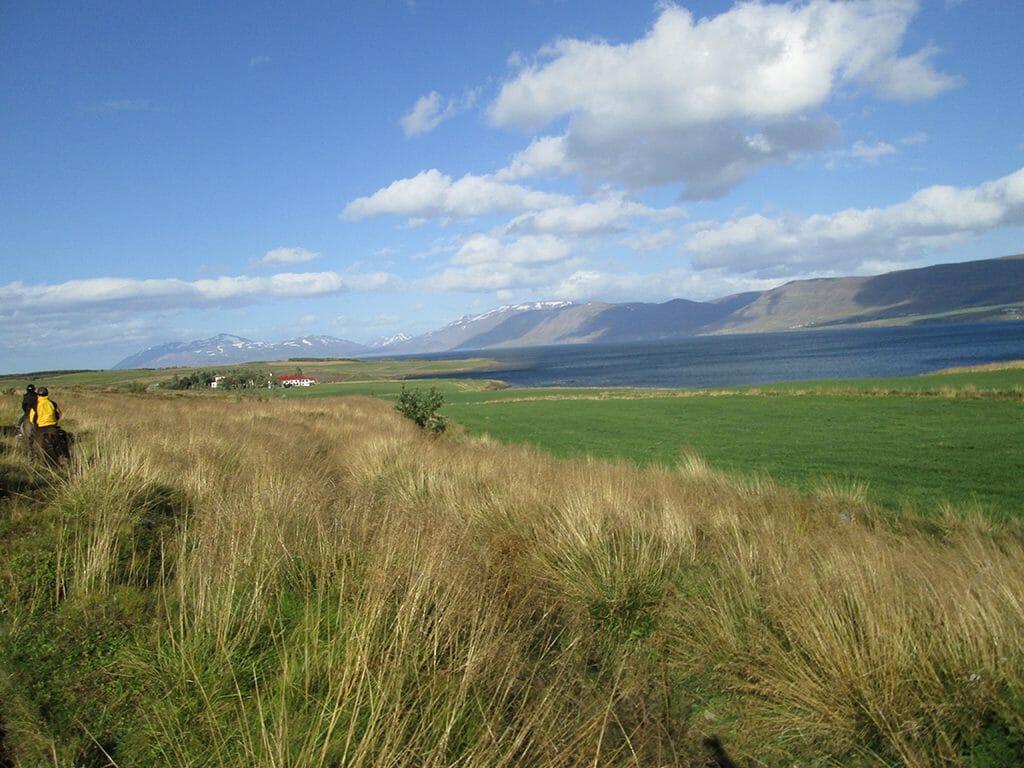 Countryside around Skjaldarvík