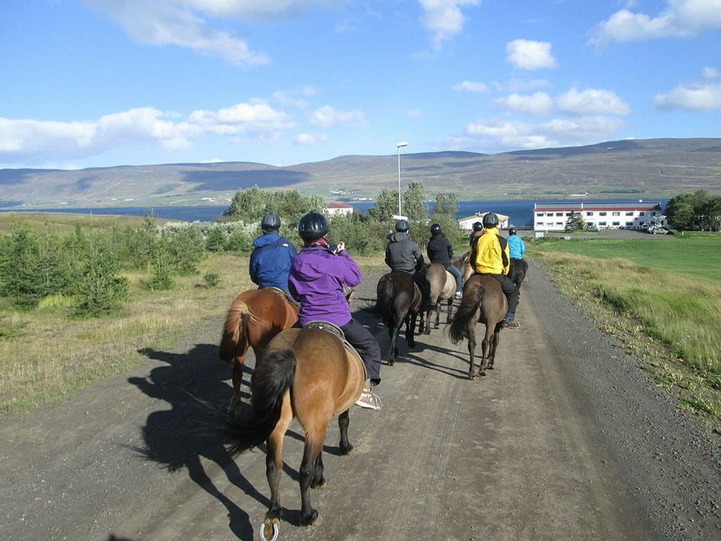 Riding back to Skjaldarvík