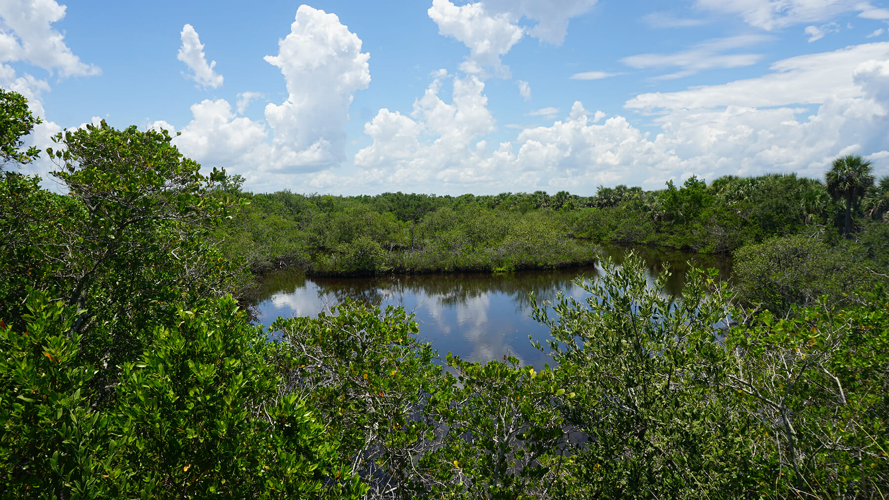 Wildlife Refuges