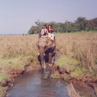 Elephant Safari in Nepal