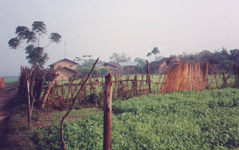 Tharu village