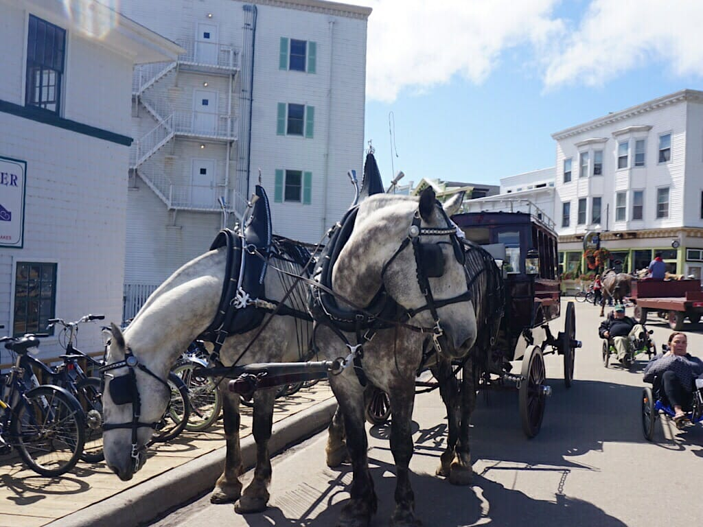 Mackinac Island carriage