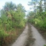 Nobles Road Florida Trail