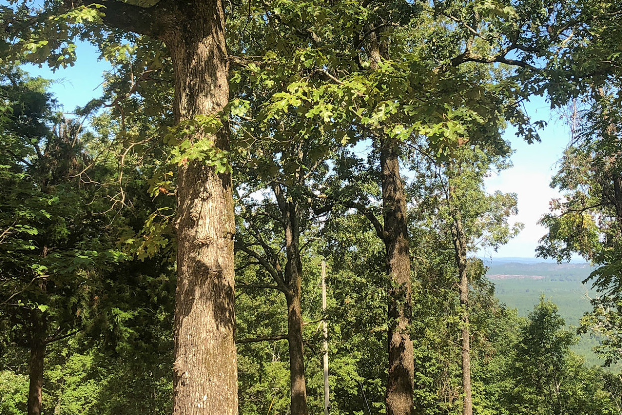 View of distant mountain from caretaker's cabin at Flagg Mountain