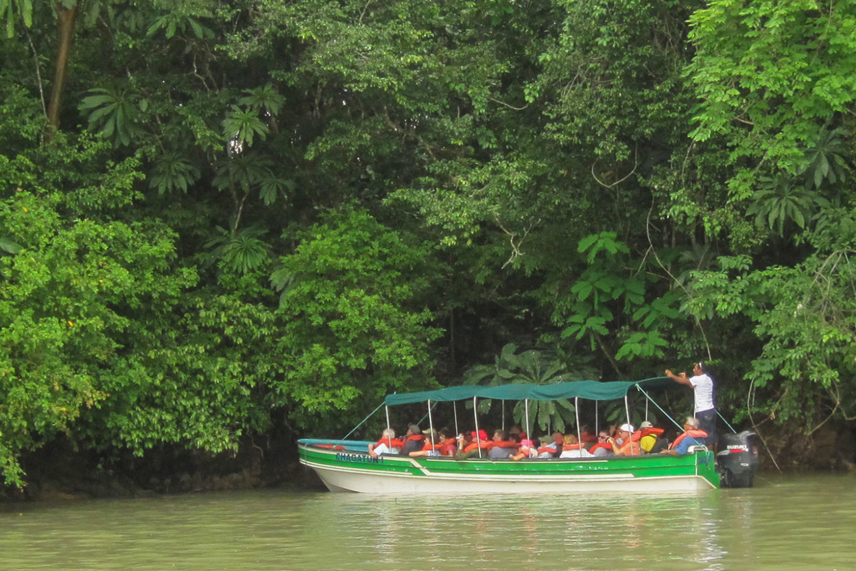 Small boat along jungle