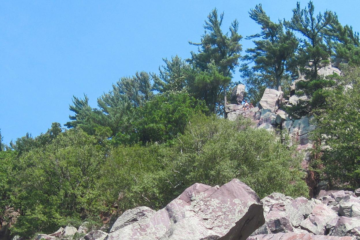 Jumble of purple rocks on a forested hillside